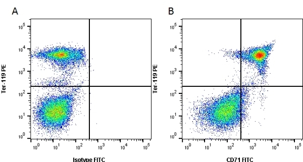 CD71 Antibody | 8D3 gallery image 1