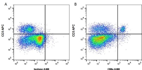 CD8 Alpha Antibody | KT15 gallery image 3