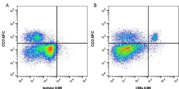 CD8 Alpha Antibody | KT15 gallery image 2