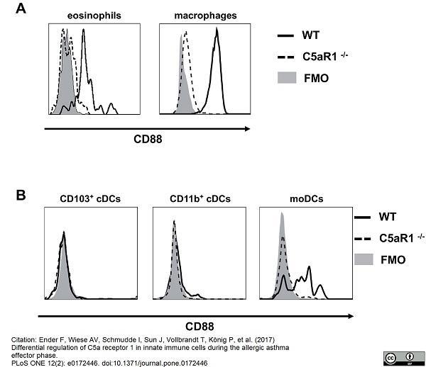 CD88 Antibody | 20/70 gallery image 2