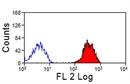 CLEC2 Antibody | 17D9 thumbnail image 2