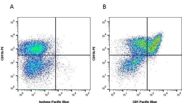 Gr-1 Antibody | RB6-8C5 gallery image 1