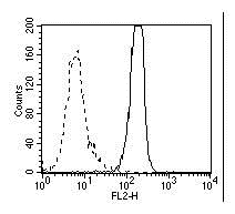 High Mobility Group Protein B1 Antibody | HMG1-5H6 gallery image 3