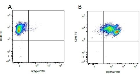 IgG1 Antibody gallery image 18