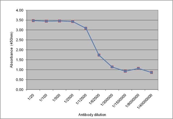 IgM Antibody | 10921 gallery image 1