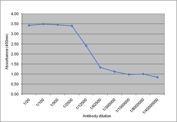 IgM Antibody   10922 gallery image 1