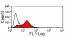 JAM-C Antibody | CRAM-18 F26 thumbnail image 3