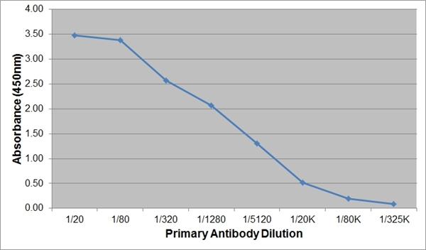Kappa Light Chain Antibody   OX-20 gallery image 3