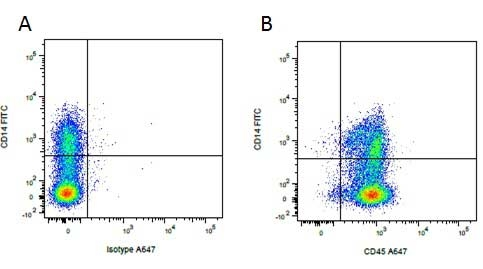 Mouse IgG1 Negative Control Antibody thumbnail image 26