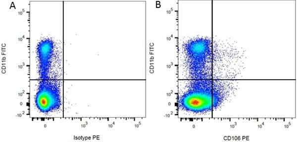 Mouse IgG1 Negative Control Antibody gallery image 24
