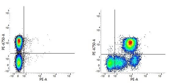 Mouse IgG2b Negative Control Antibody gallery image 3