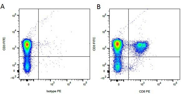 Rat IgG1 Negative Control Antibody gallery image 3