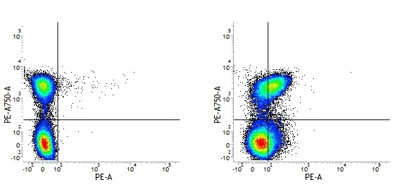Rat IgG1 Negative Control Antibody gallery image 2