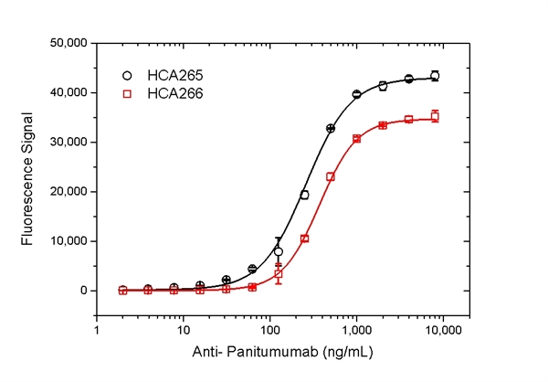 Panitumumab Antibody | AbD23897_hIgG1 gallery image 4
