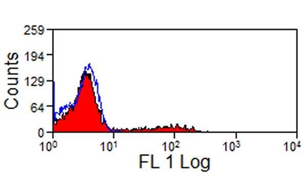 CD11R1 Antibody   MIL4 gallery image 1