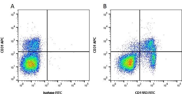 CD11R3 Antibody | 2F4/11 gallery image 1