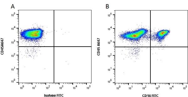 CD16 Antibody | G7 gallery image 1