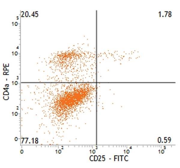 CD25 Antibody | K231.3B2 gallery image 1