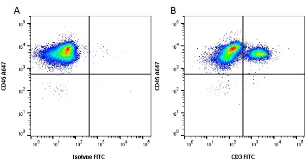 CD3 Antibody | PPT3 gallery image 1