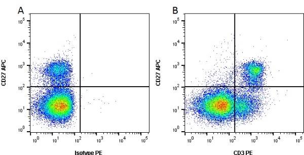 CD3 Antibody | PPT3 gallery image 2