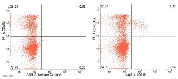CD335 Antibody | VIV-KM1 gallery image 2