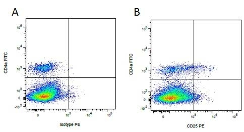 CD4 Alpha Antibody | MIL17 gallery image 7