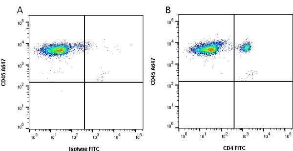 CD4 Alpha Antibody | MIL17 gallery image 2