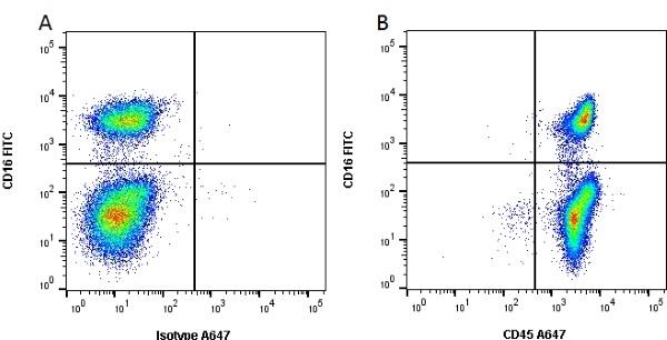 CD45 Antibody   K252.1E4 gallery image 2