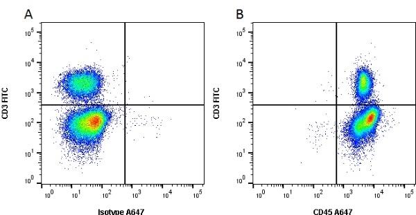 CD45 Antibody | K252.1E4 gallery image 1