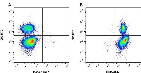 CD45 Antibody   K252.1E4 gallery image 1
