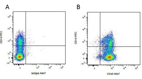 CD45 Antibody | K252.1E4 gallery image 6