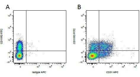 CD45 Antibody   K252.1E4 gallery image 8