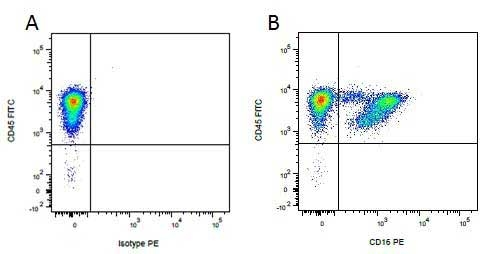 CD45 Antibody   K252.1E4 gallery image 9