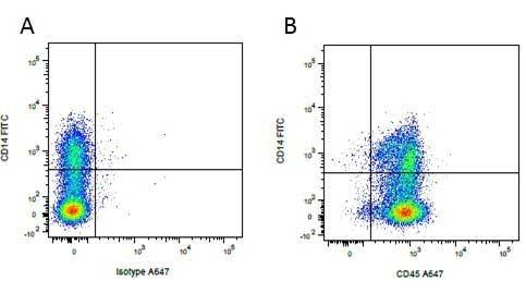 CD45 Antibody   K252.1E4 gallery image 6