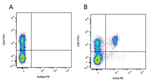 CD5 Antibody | 1H6/8 gallery image 2