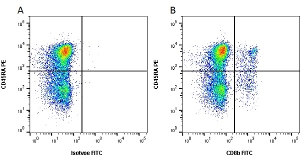CD8 Beta Antibody | PPT23 gallery image 1