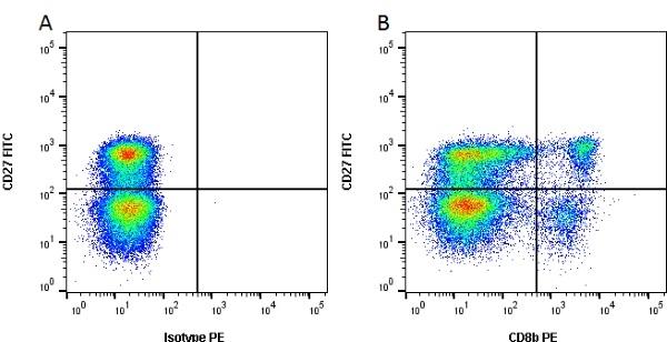 CD8 Beta Antibody   PPT23 gallery image 2