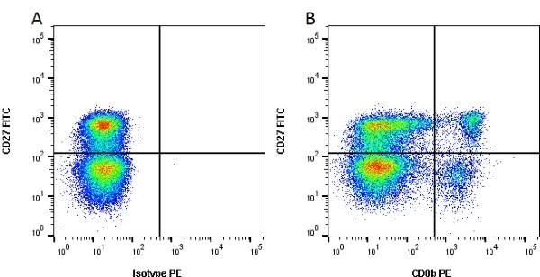 CD8 Beta Antibody | PPT23 gallery image 2