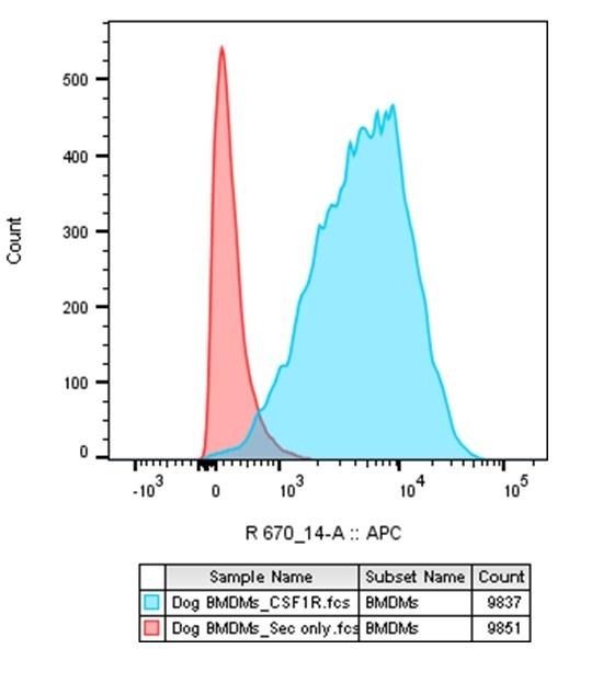 CSF1R Antibody | ROS8G11 thumbnail image 4