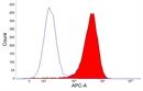 CSF1R Antibody | ROS8G11 thumbnail image 3