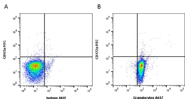 Granulocytes Antibody   6D10 gallery image 2