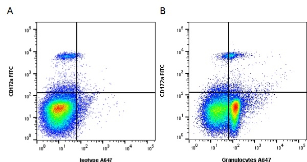 Granulocytes Antibody   6D10 gallery image 1