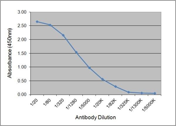 IgG1 Antibody | K139 3C8 gallery image 1