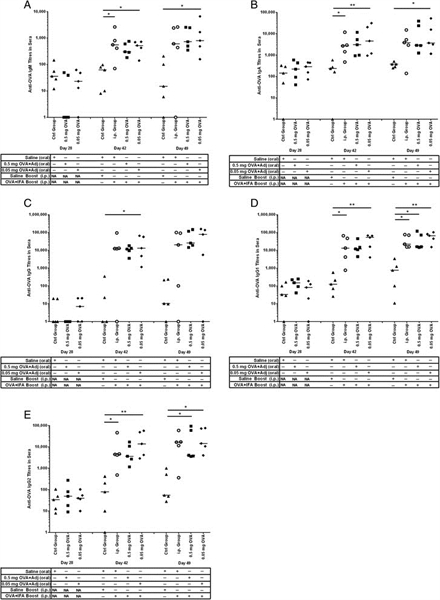 IgG1 Antibody | K139 3C8 gallery image 3