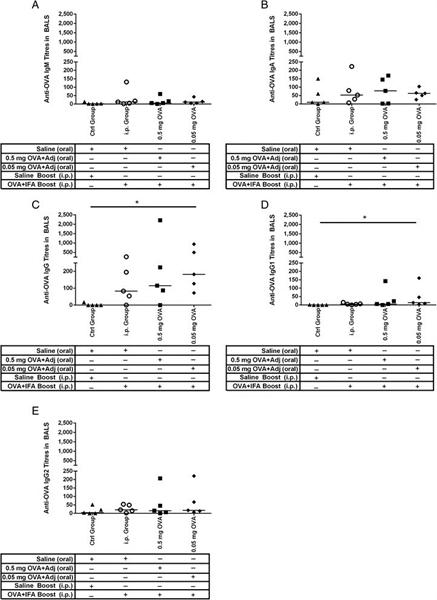 IgM Antibody | K52 1C3 gallery image 2