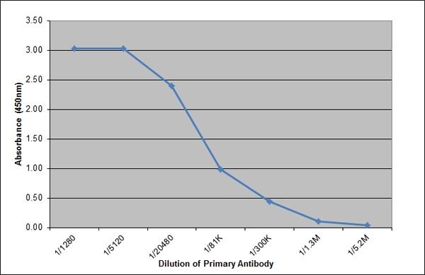 Lambda Light Chain Antibody | K139 3E1 gallery image 1