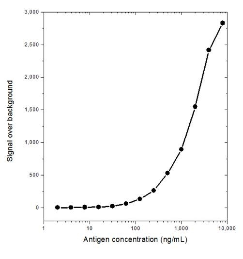 L-LACTATE Dehydrogenase Antibody | AbD14008 gallery image 1