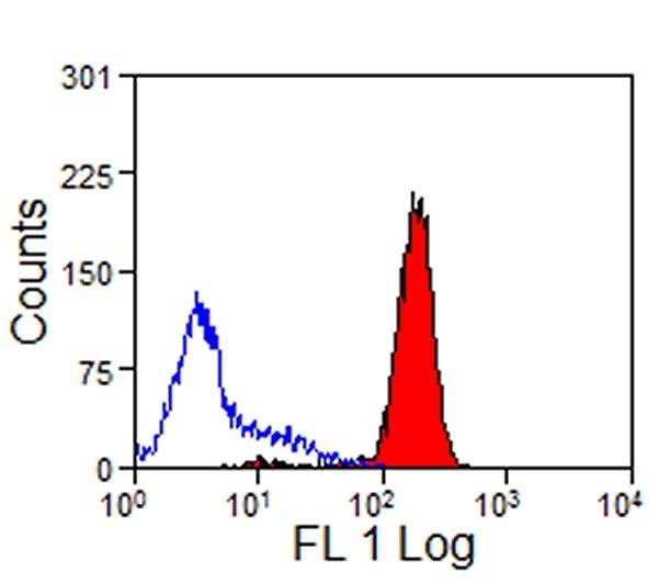 CD44 Antibody | W4/86 gallery image 1
