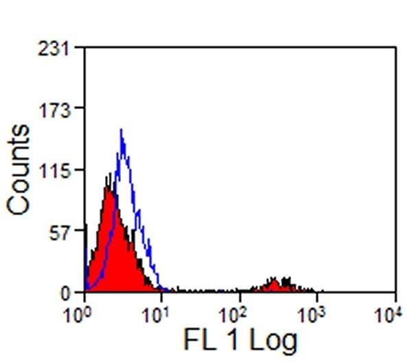 CD8 Antibody | 12.C7 gallery image 1
