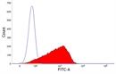 MHC Class I Monomorphic Antibody | 73-2 thumbnail image 1